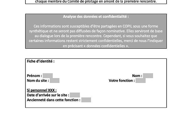 Formulaire d'analyse de la demande en COPIL RPS