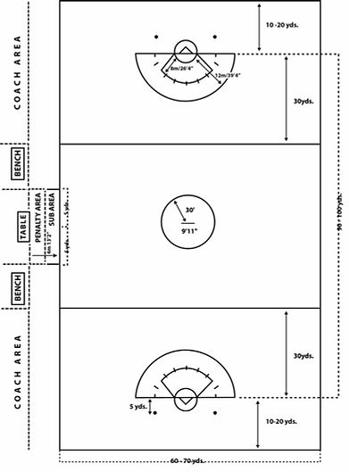 womens-field-diagram.jpg