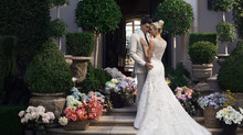 Casablanca Bridal Collection at June Brides