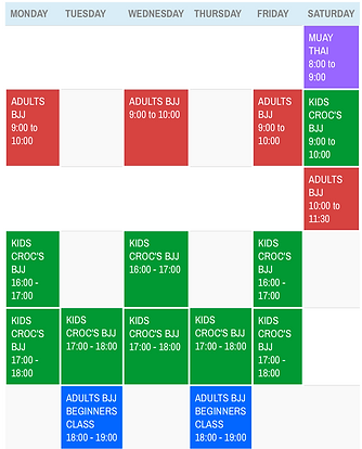 element martial arts time table