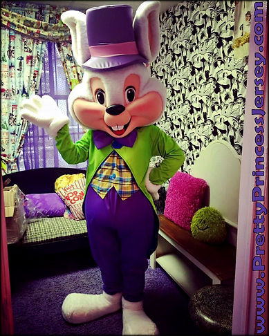Easter Bunny, Mascot for Hire, Character Rental, Holiday Character Appearance