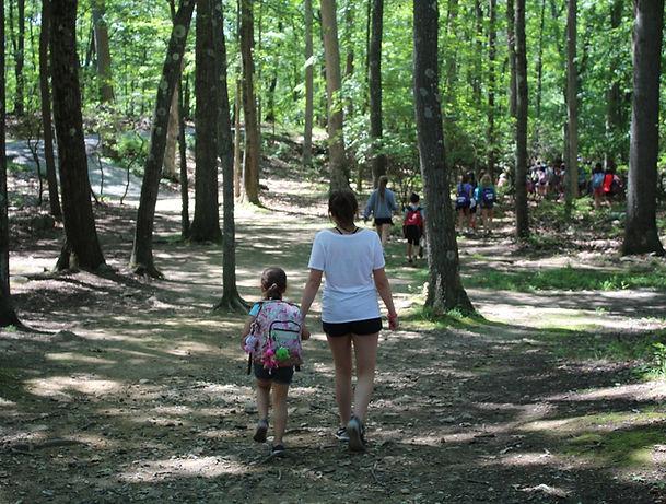 Mt Lakes Camp Woods