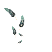 feather-1689331_1280_edited.png