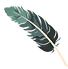 feather-1689331_1280_edited_edited.png