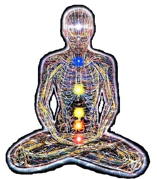 Проявление шестой чакры на уровне физического тела. Какую роль выполняет аджна в организма человека. Какие функции в теле человека выполняет шестая чакра. На что влияет 6 чакра на уровне тела, физики.