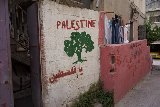 STUDY TRIP: Palestine (2014/15)
