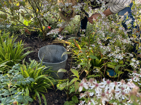 Eltern - Gartenaktion