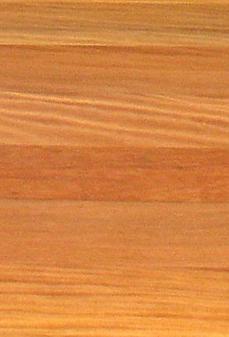 peruvian maple.png