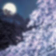 kaii_風呂敷スカーフ_東山魁夷_宵桜.jpg