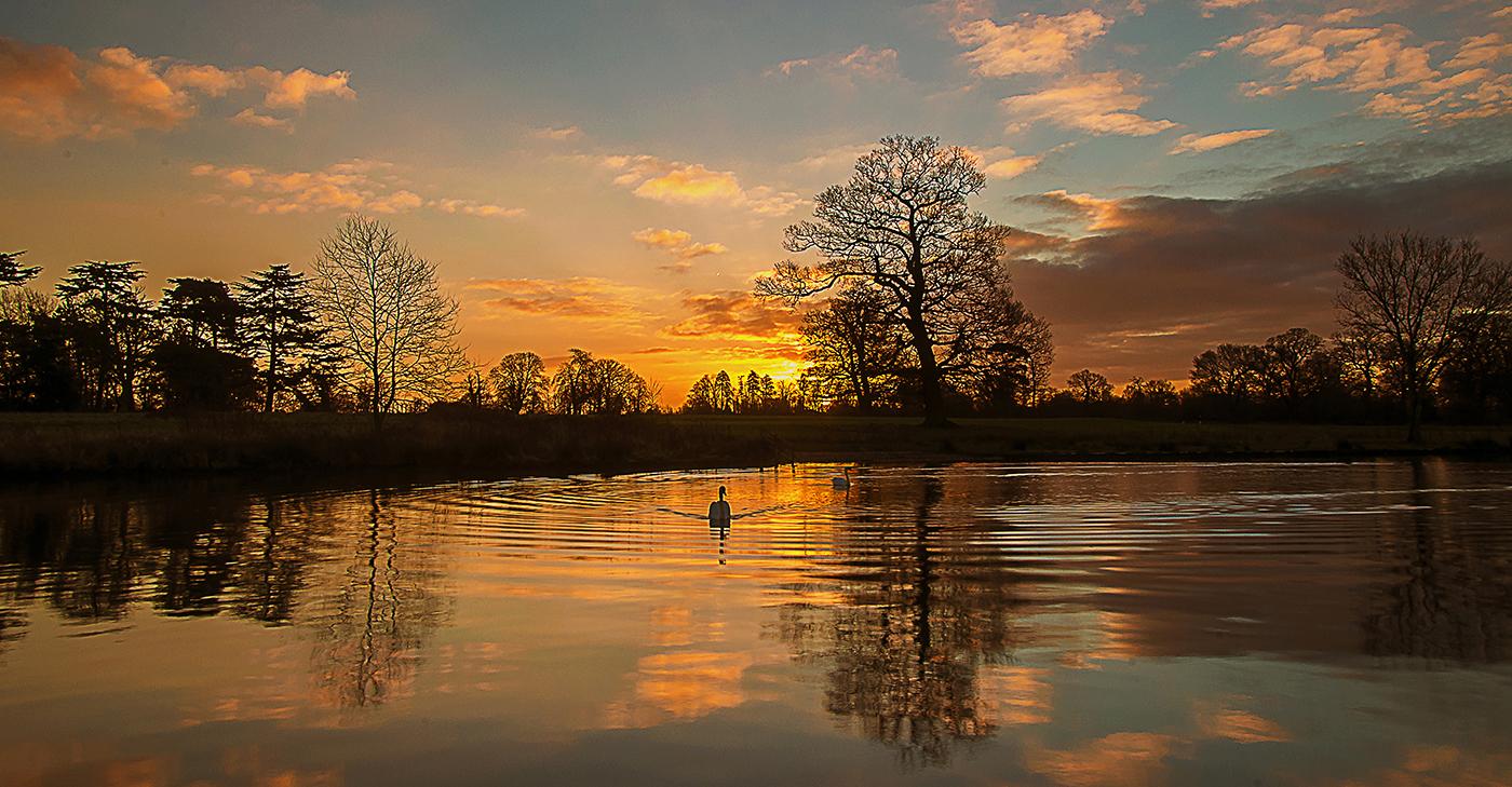 Swan Lake by Gary Scorgie.jpg