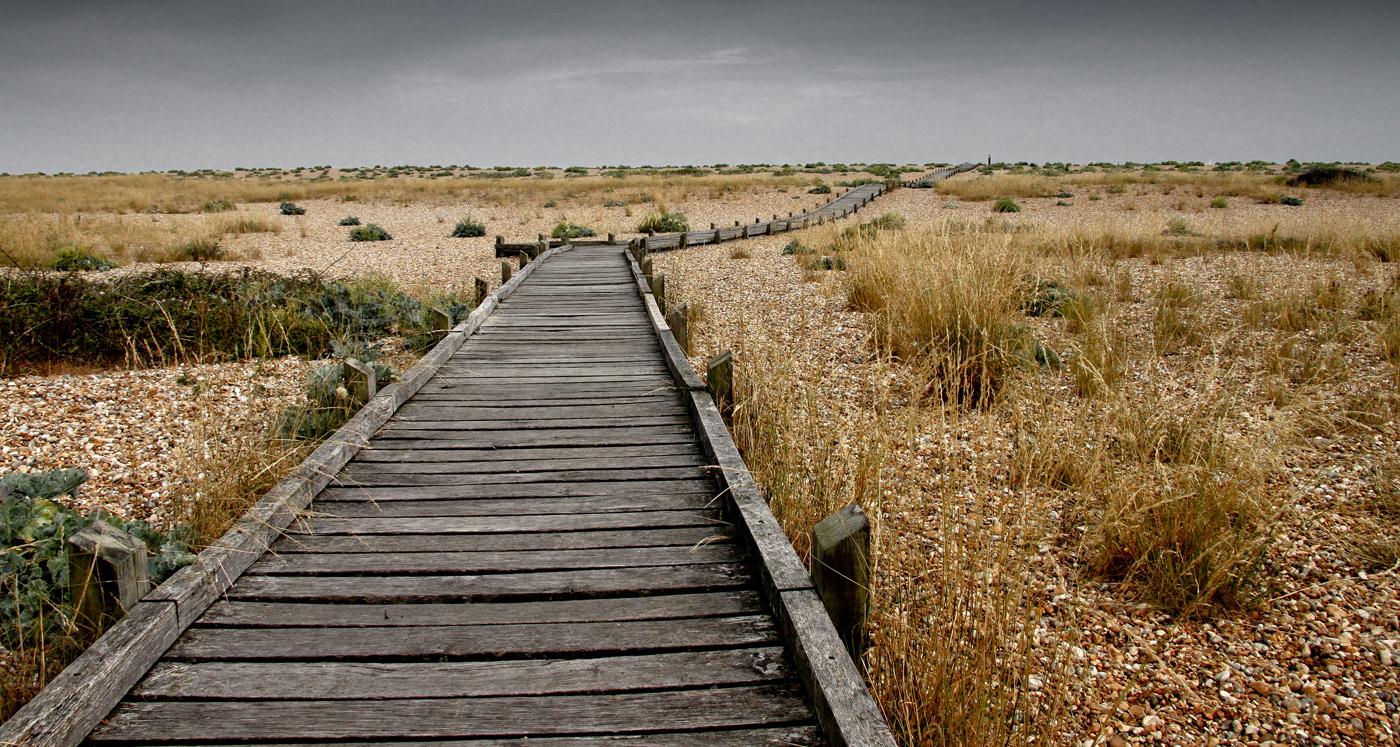 BEACH BOARDWALK by Neil Griffin.jpg