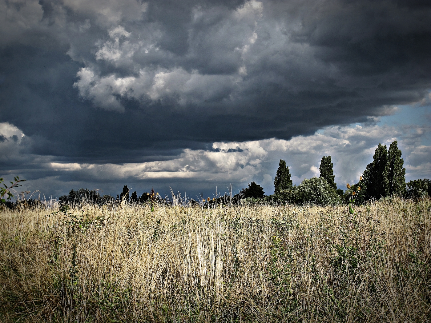 AND THEN CAME THE RAIN  by Rojer Weightman.JPG