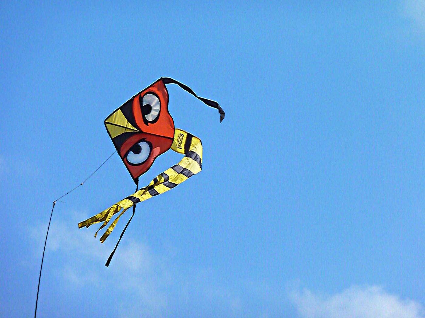 EYES IN THE SKY by Linda Miles.jpg