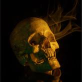 SKULL by Mark Collins.JPG