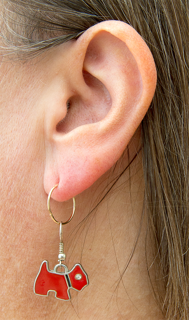 EAR, RING, DOG (HEARING DOGS) by Peter Morrish