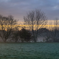 CHILLY MORNING by Annette Sissons.JPG