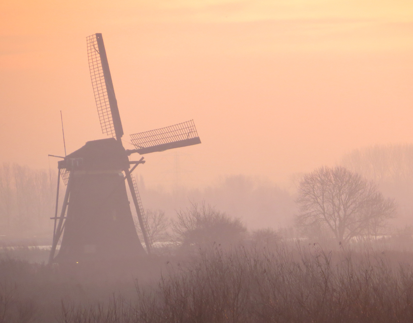 DUTCH DAWN by Colin Botwright