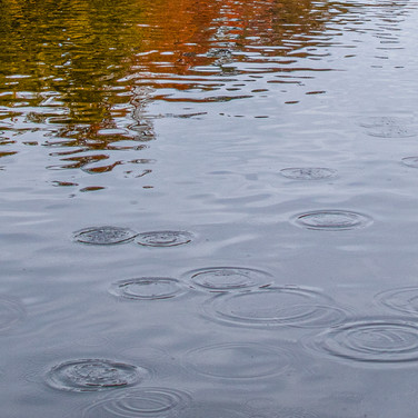 AUTUMN WATER CIRCLES by Don Dobson