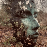 LEAF SPIRIT by Annette Sissons.JPG
