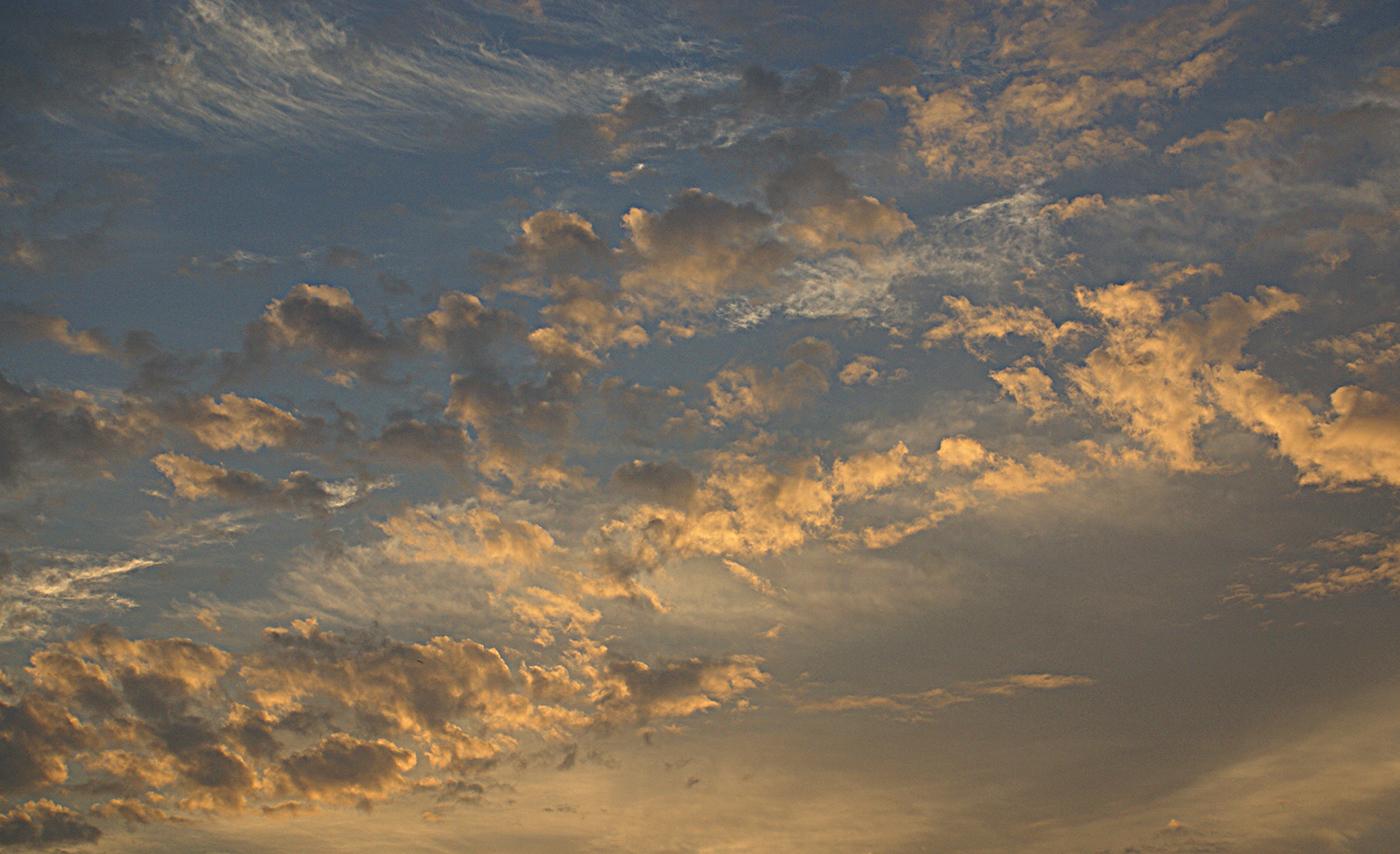 EVENING SKY by Linda Miles.jpg