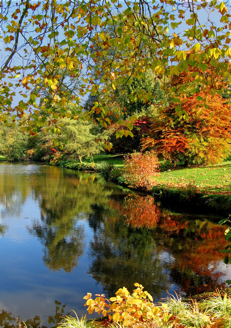 AUTUMN IN SAVILL GARDENS by Jim Morrissey.jpg