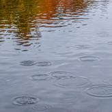 AUTUMN WATER CIRCLES by Don Dobson.jpg
