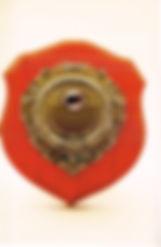 10 Rimmington Shield Best Open image in