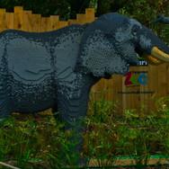 ELEPHANT by Matthew Harrod.jpg