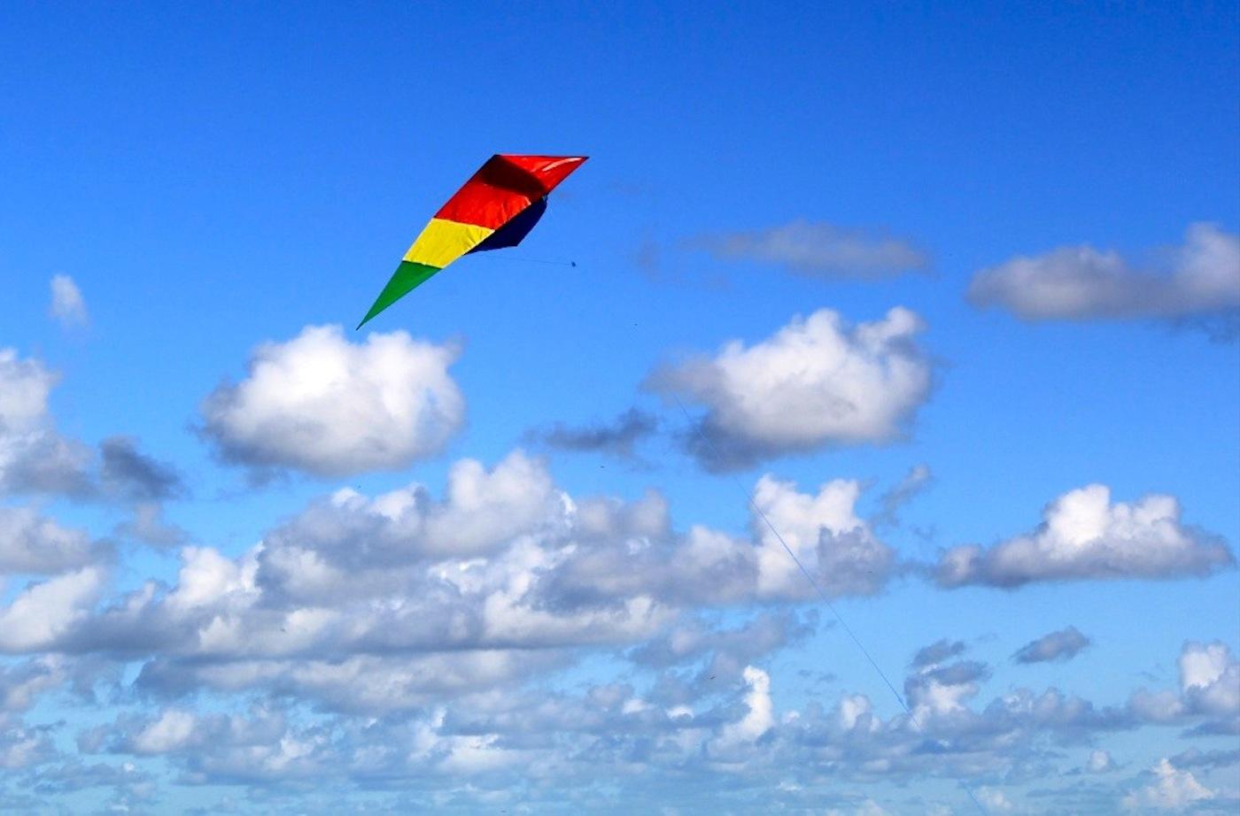KITE FLYING by Bill Berloth.JPG