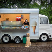 ICE CREAM PLEASE by Mark Collins