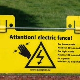 ELECTRIC FENCE by Peter Morrish.jpg