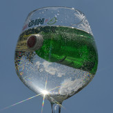 G&T WITH A TWIST by Judy Giles.JPG