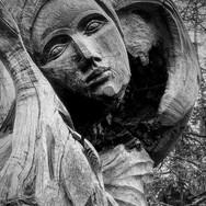 WOOD SCULPTURE by Annette Sissons.JPG