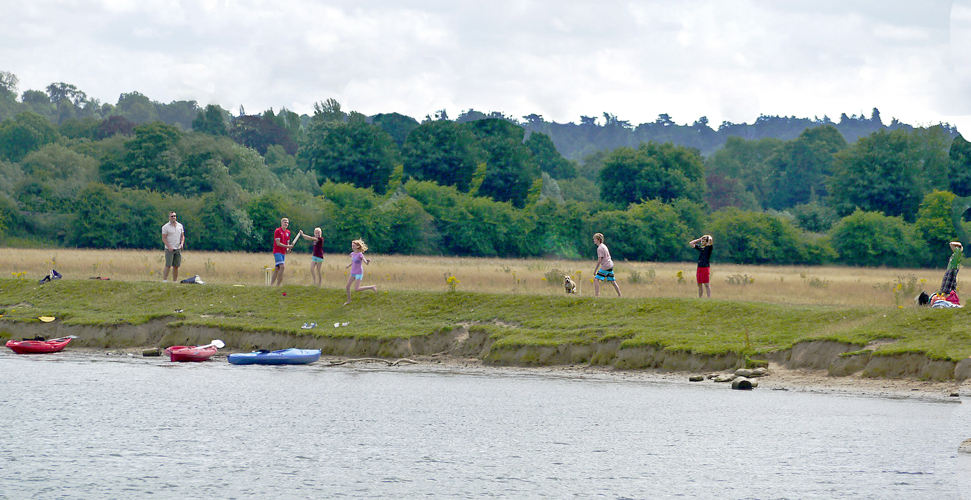 CRICKET ON THE BANK by Dave Taylor.jpg