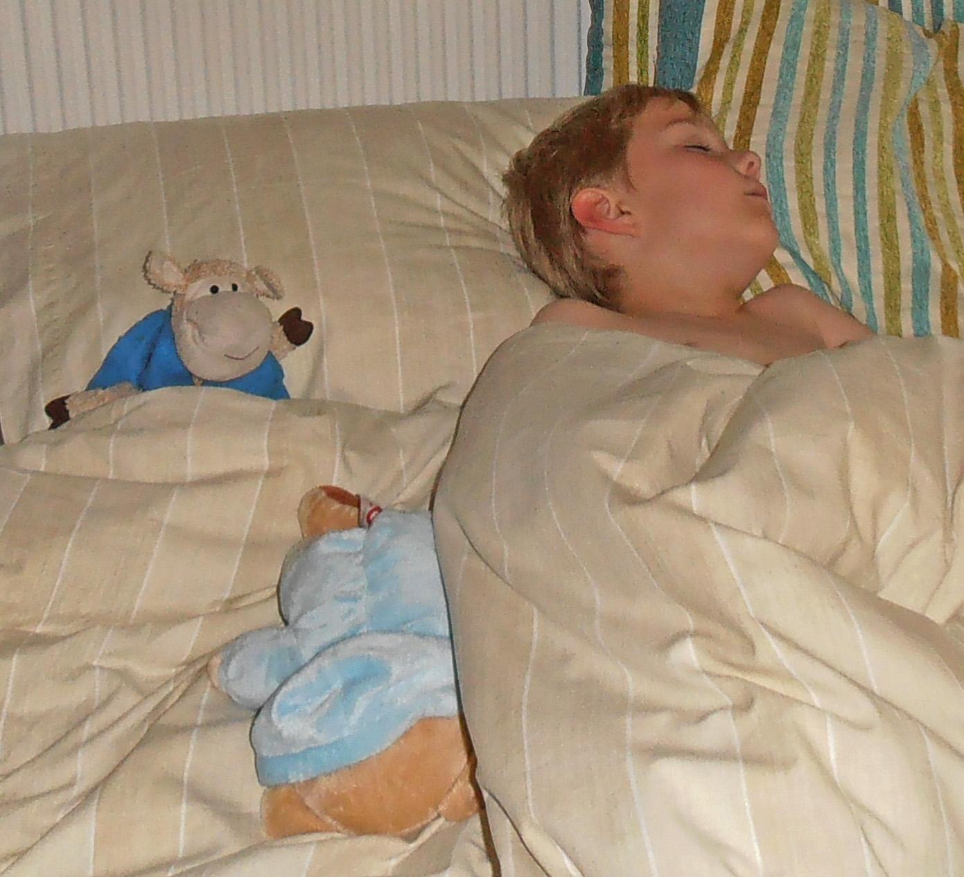 GO FOR A SLEEP OVER by Sue Avey..jpg