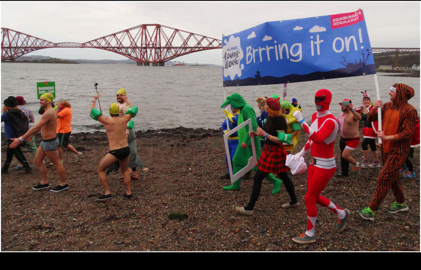 THE LOONY DOOK by Jim Williams