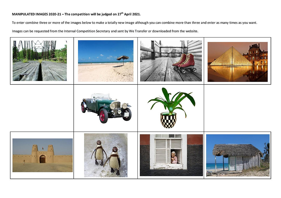 MANIPULATED IMAGES 2020-21-page-001.jpg