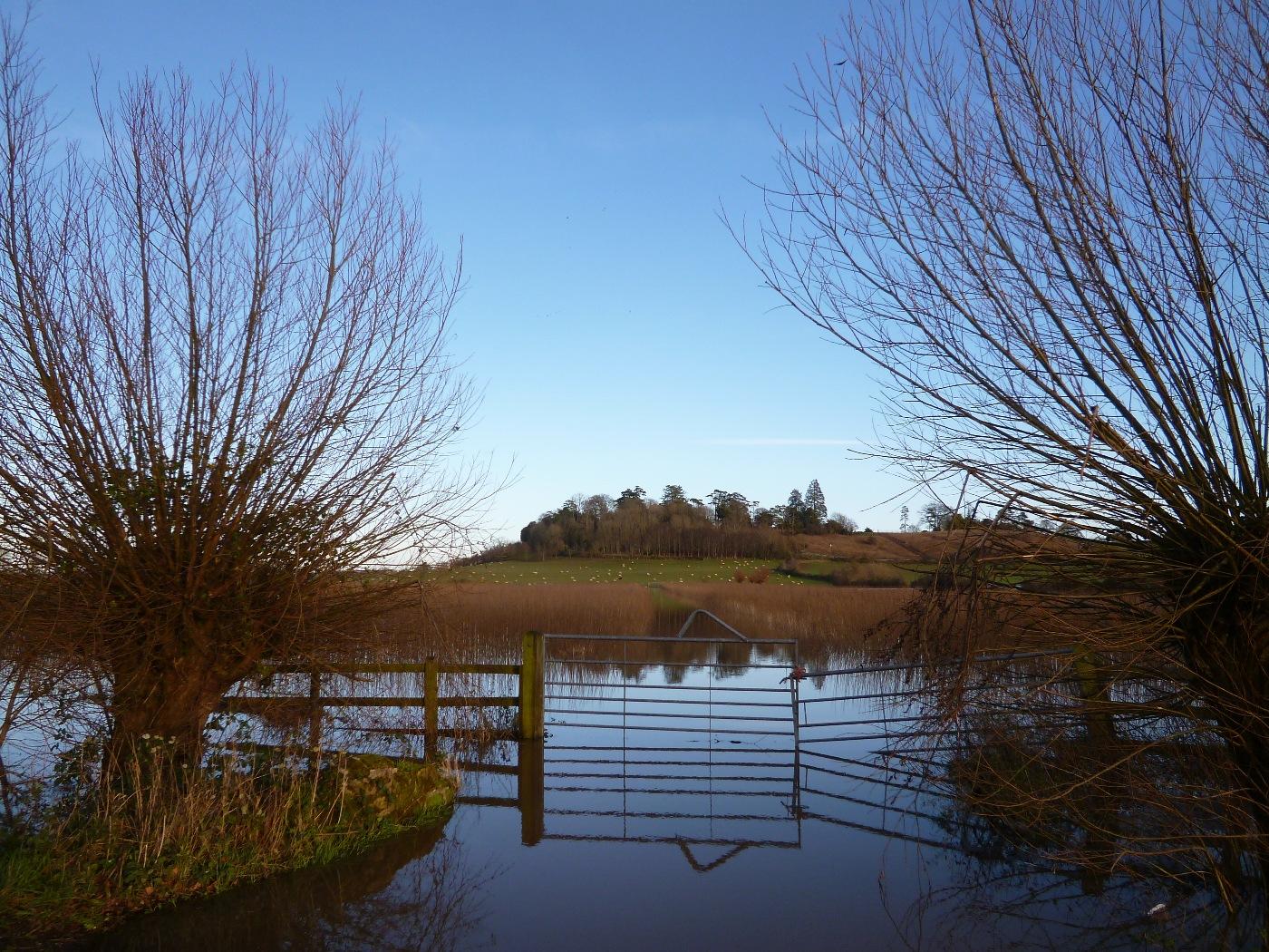 SOMERSET LEVELS IN FLOOD by Deborah Wetherall.JPG