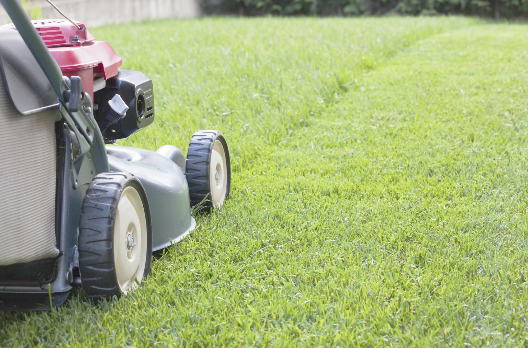 GRASS CUTTING by Richy Sansom