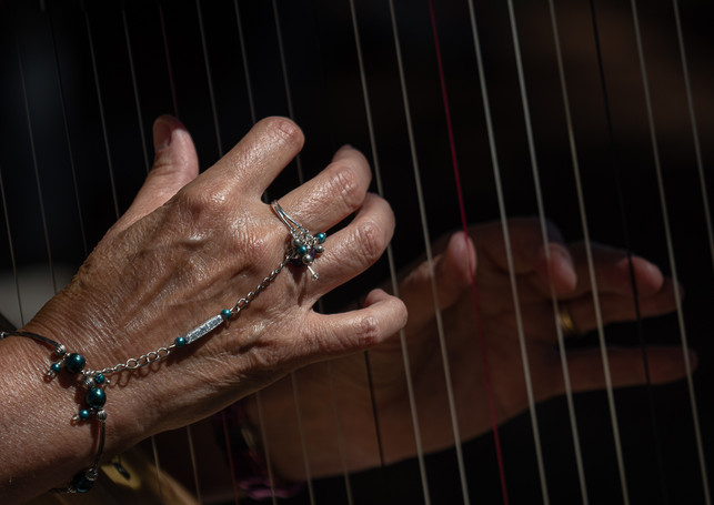 HARPISTS HAND by Mark Collins