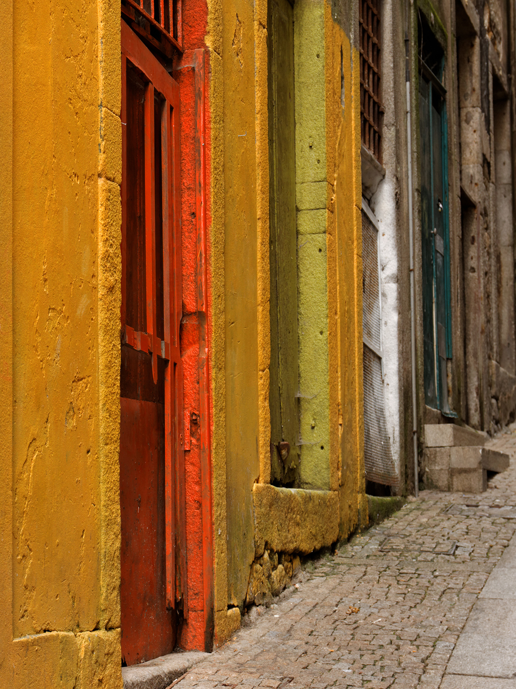 PORTO DOORS by Ray Mengham