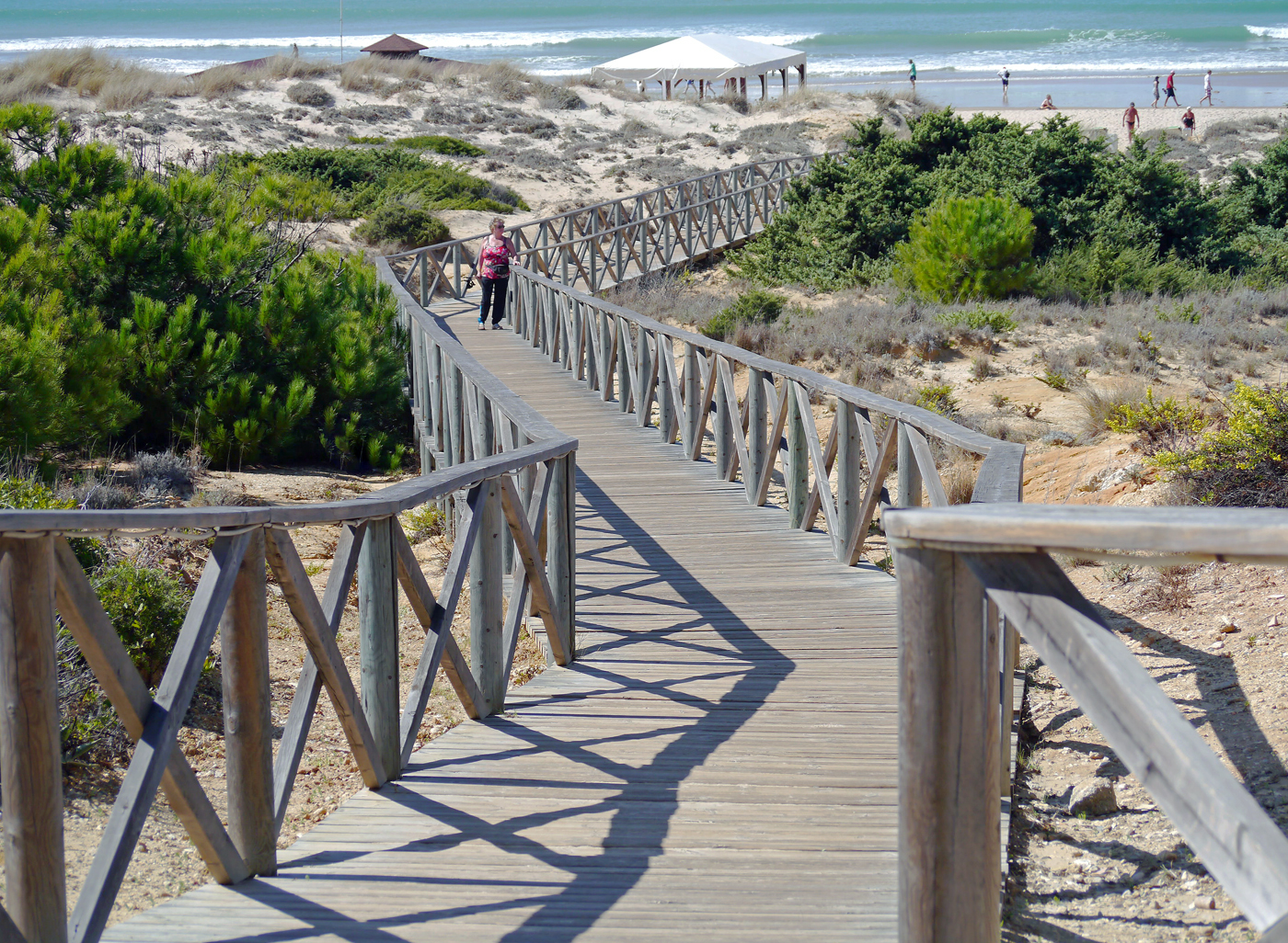 WALKWAY TO BEACH by Dave Taylor.jpg