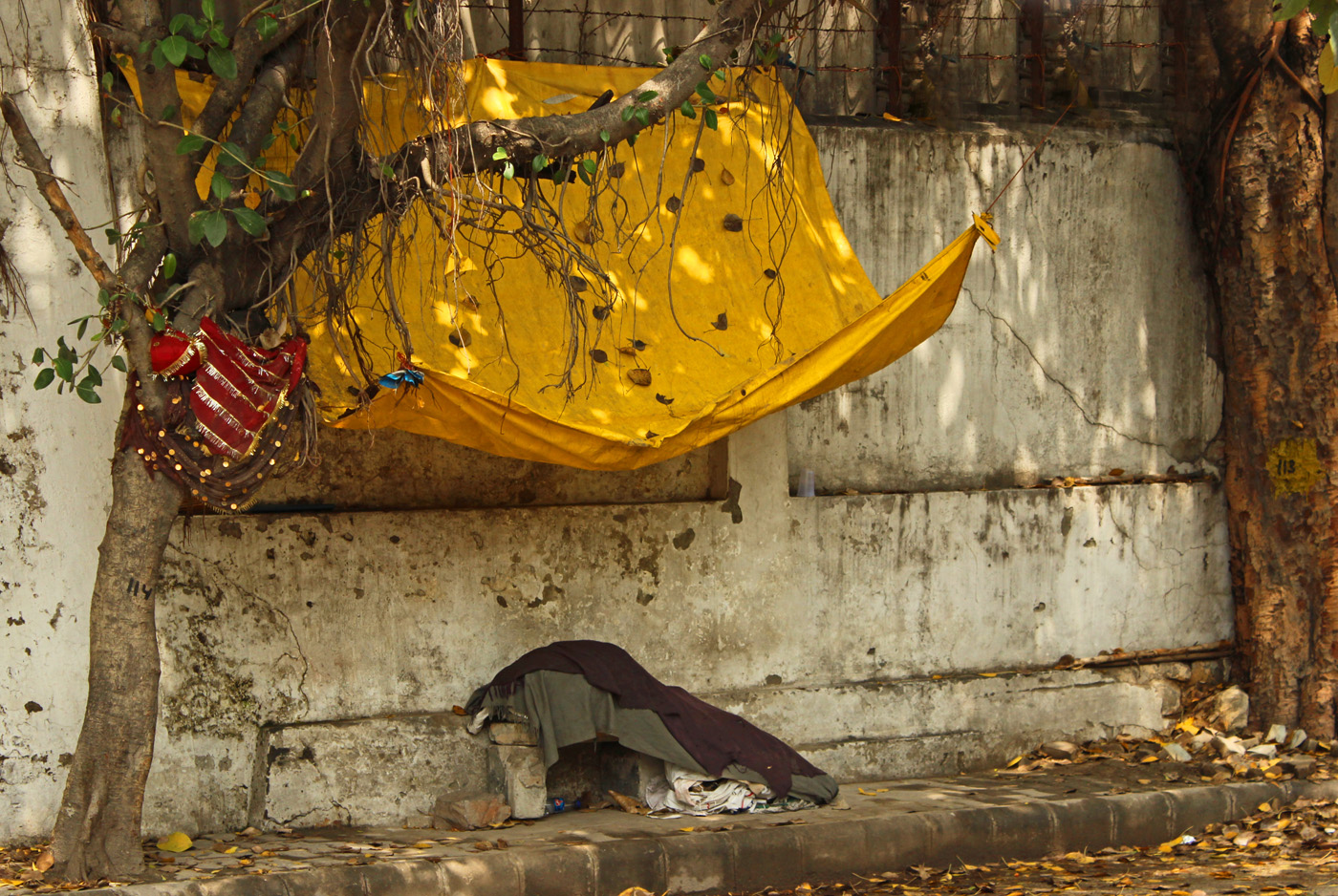 HOME IS WHERE YOUR HART IS by Sue Avey