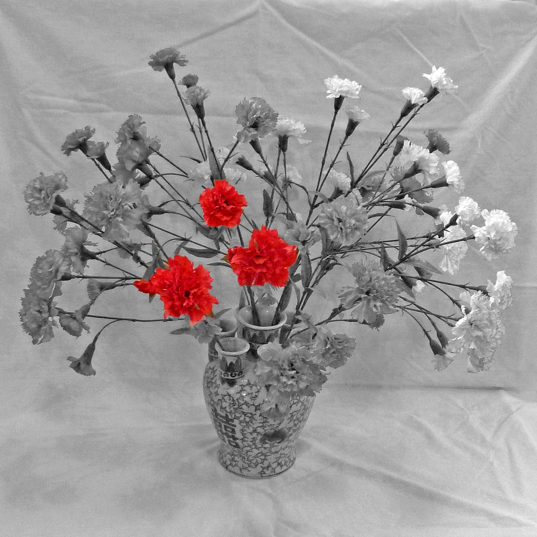 THREE RED CARNATIONS by Jim Chown