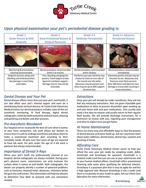 TCVMC Dental Handout Revised.jpg