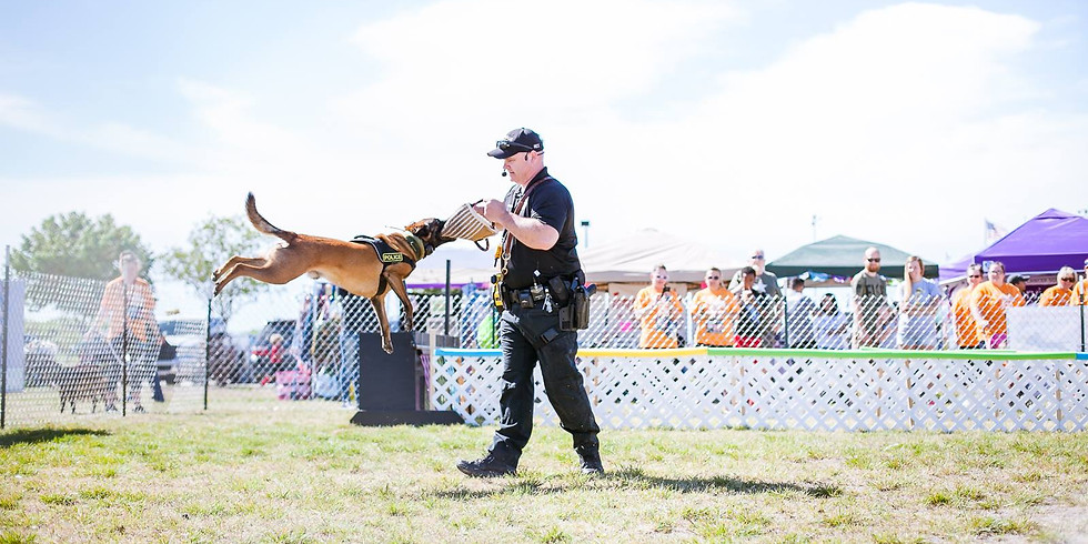 K9 Unit Police Dog Demo