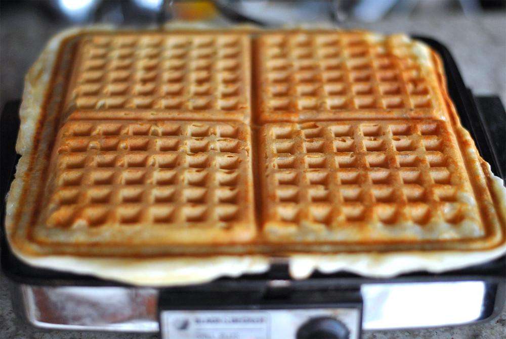 massa waffle maquina