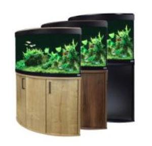 Fish Tanks.JPG