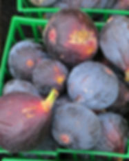 Fruit_MissionFigs_Cropped_IMG_2790 copy