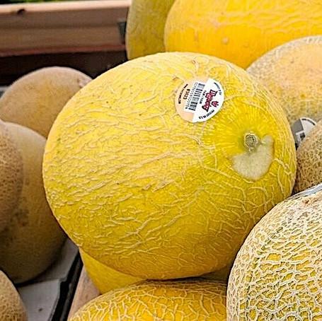 Hami Melons